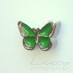 motýľ zelený